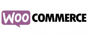 WordPress Shop con WooCommerce? I vantaggi e gli svantaggi